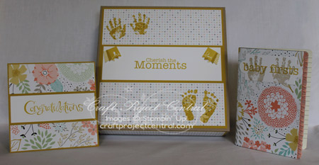 Baby Shower Gift Set