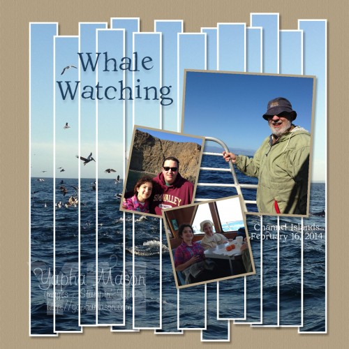Whale Watching by Yapha Mason