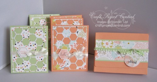 Petal Parade Cards & Card Holder