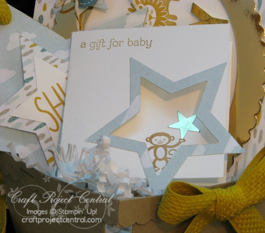 Berry Basket Gift Set for Baby SP