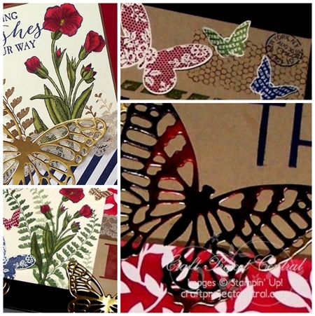 Family Established Shadow Box Card Collage SP