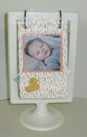 Standing Scrapbook for Baby SP