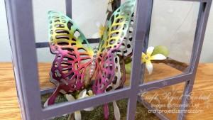 Butterfly Terrarium Gift Set SP
