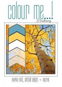 CMCC Full Graphics-014