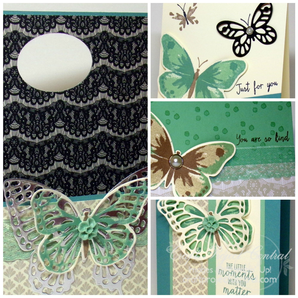 Butterfly Box Card Set SP