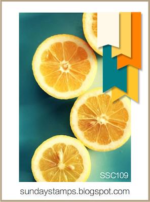 ssc109f