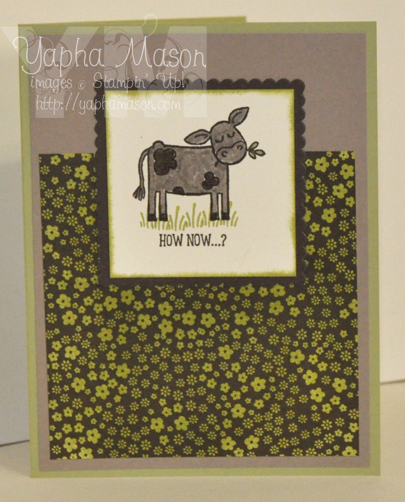Brown Cow by Yapha